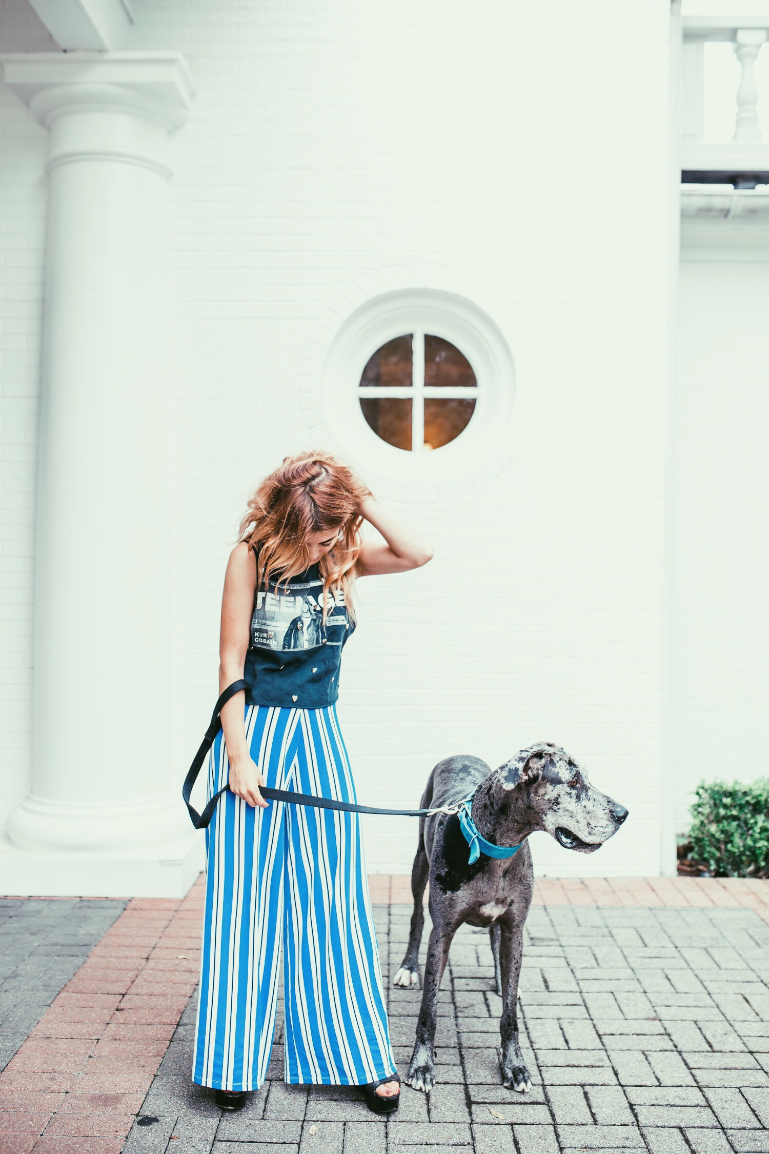 saved kisses clothing and great dane rescue dog