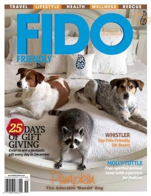 FashionVeggie's feature in FIDO Friendly Magazine