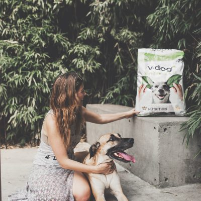 vegan dog food (featuring v-dog): is it animal cruelty?  is it healthy?  and just… why???