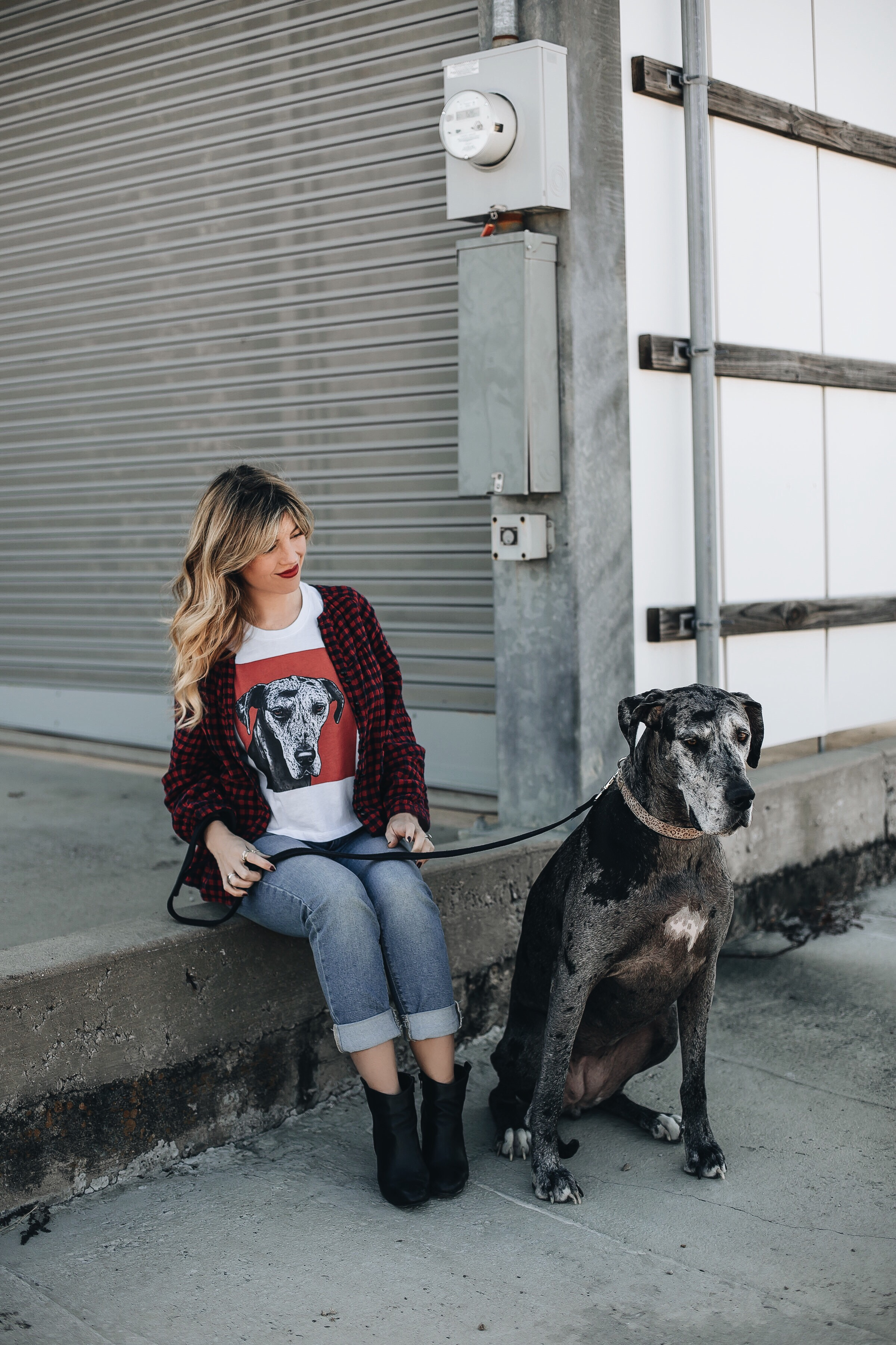 pop your pup top with great dane