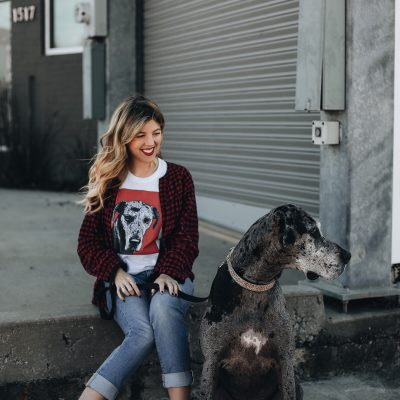 Pop Your Pup (+ a Valentine's Day giveaway!)